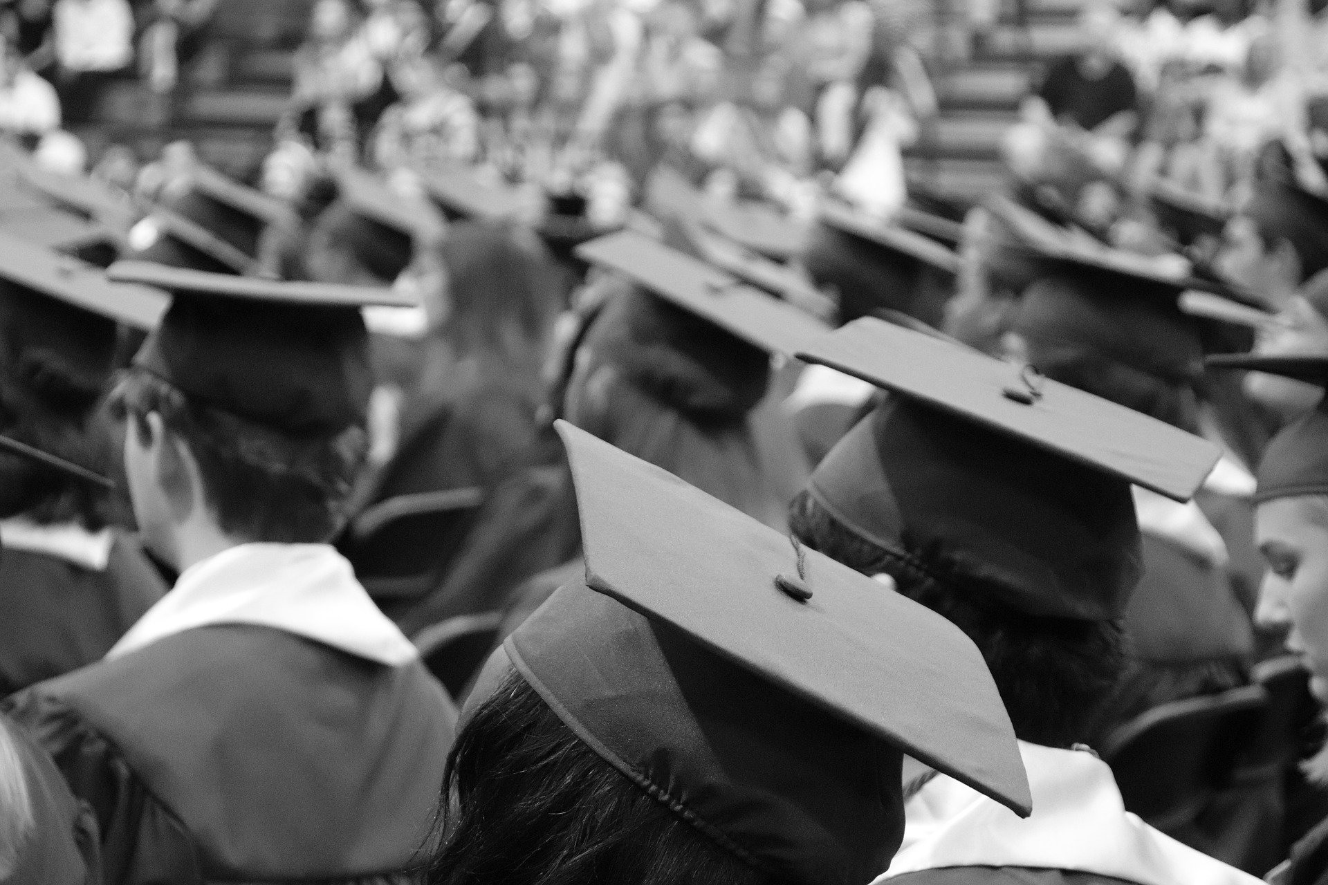 Free Job search tips for Graduates